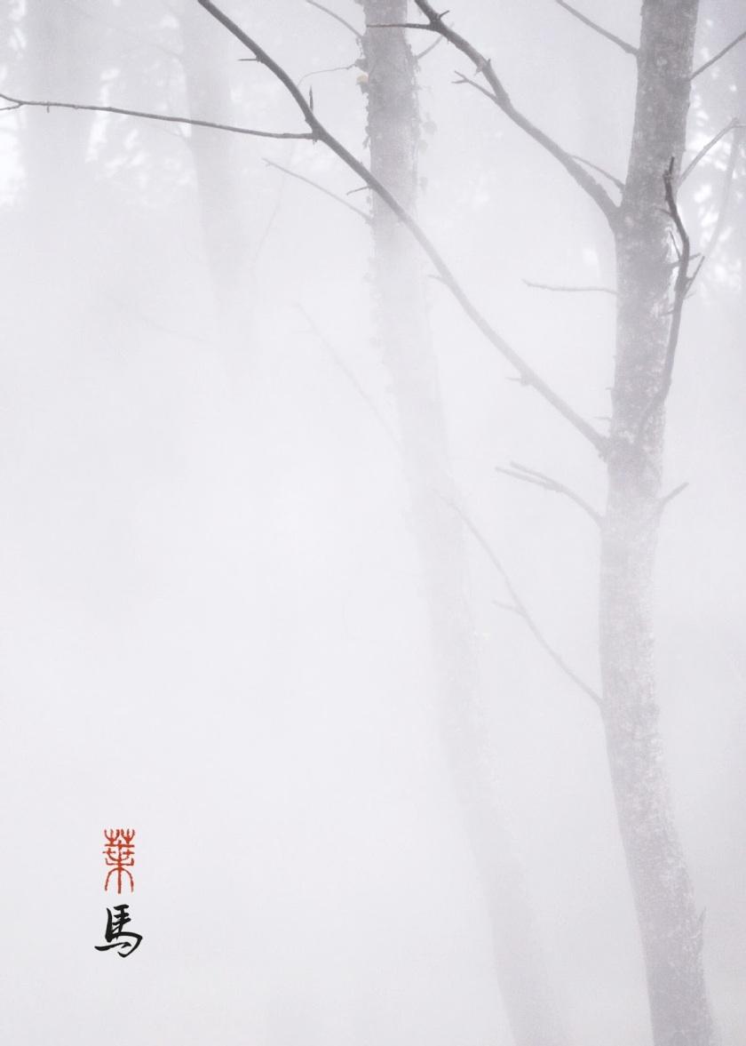475-4-mist5