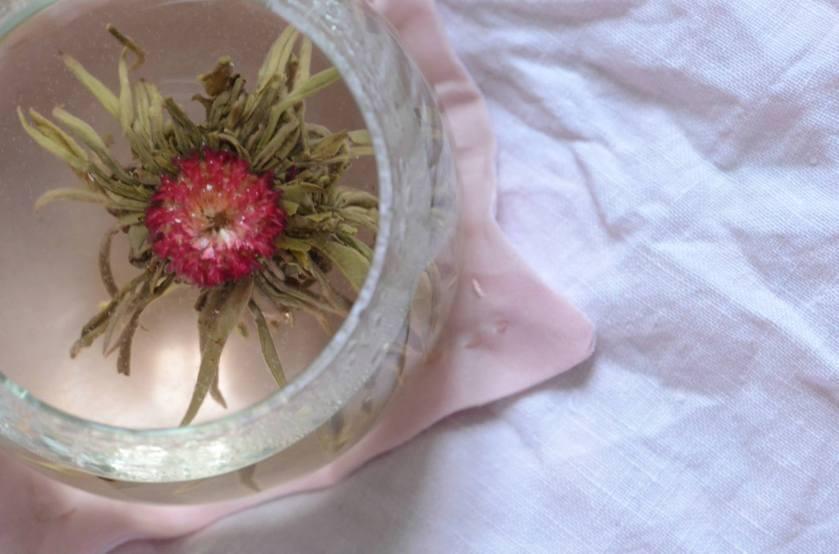 Otsuki Sama - Collection Hibiscus 2015