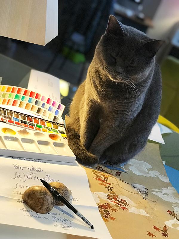 aquarelle Valerie Laudier palette Sardine Reine boubou le chat